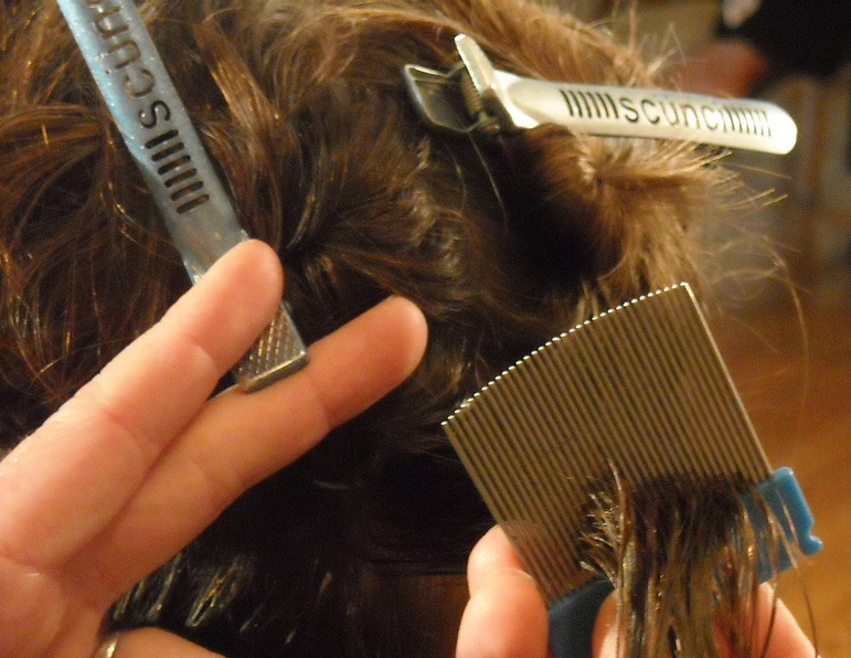 Does Hair Dye Kill Lice Or Nits Nits In Hair Removal And Info